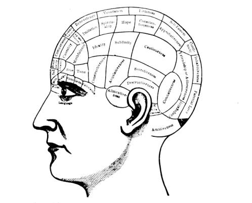 phrenology illustration from spurzheim